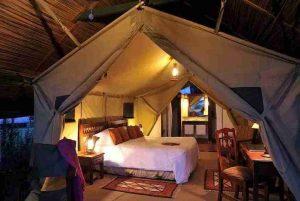 kenya tanzania budget trips